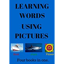 LEARNING WORDS USING PICTURES: fun children's reading book.