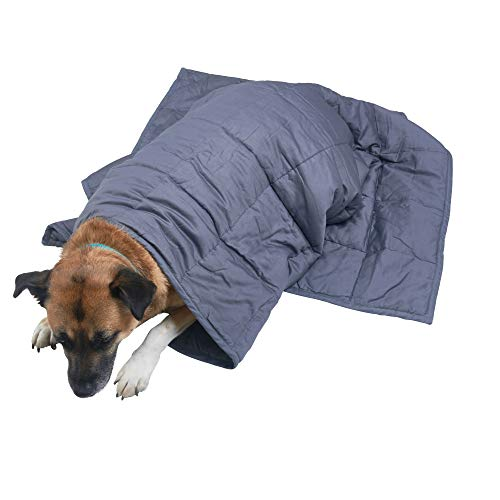 Comfy+Calm Weighted Blanket for Dogs and Children, Cotton/Glass Bead Material, Anti-Anxiety, Sensory Processing Disorder, Stress Relief, Loud Noise, Thunderstorms, Fireworks, 5lb 36x48, Gray