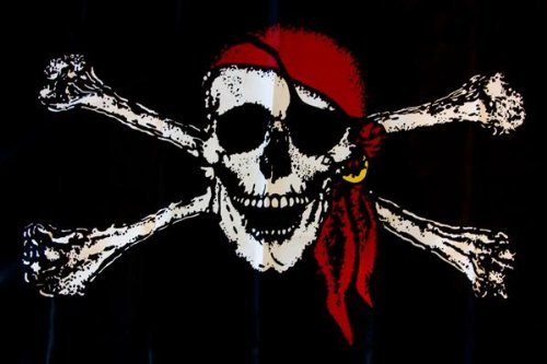 ssk pirate flag