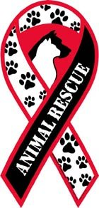 Animal Rescue Awareness Ribbon Magnet