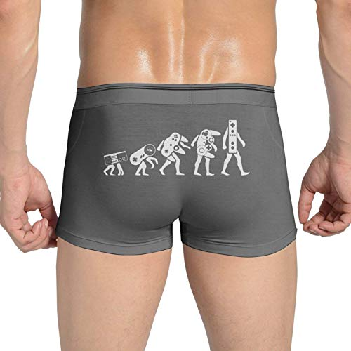 Men's Underwear Boxers Briefs Stretch Gaming Evolution Convex U Bag Light Weight Casual Breathable Soft(L,Deep Heather)