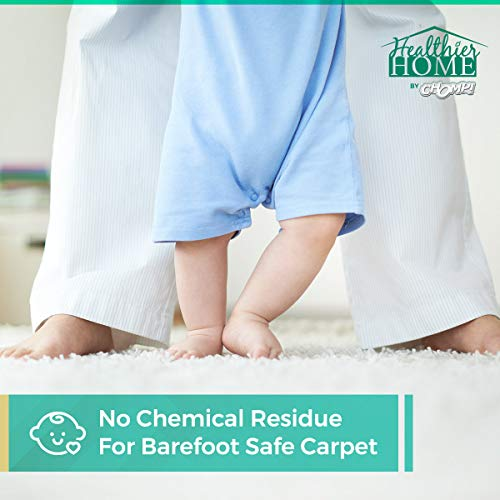 Spot Chomp World's Best Carpet Stain Remover, Professional Strength Stain Cleaner, Carpet rug and upholstery protector