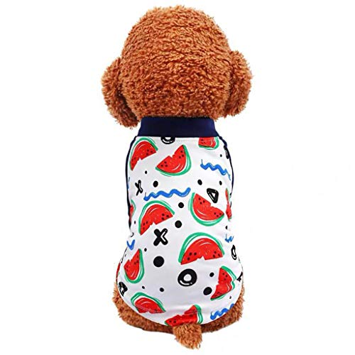 (OUBAO Dog Dresses for Puppy Apparel Pet Costumes New Pet Summer Wavy Watermelon Print Temperament Dog Leisure Shirt Costume White)