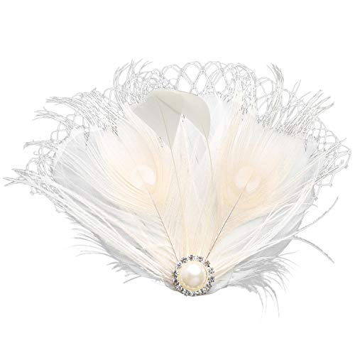 BABEYOND Bridal Wedding Fascinator Mesh Feather Fascinator Hair Clip Hair Fascinator Veil Crystal Wedding Veil (Peacock)
