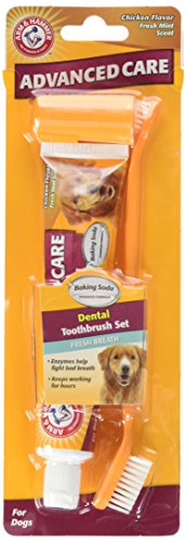 Toothpaste Cet Dog (Arm & Hammer Dog Dental Care Fresh Breath Kit for Dogs | Contains Toothpaste, Toothbrush & Fingerbrush | Reduces Plaque & Tartar Buildup | Safe for Puppies, 3-Piece Kit, Chicken Flavor)