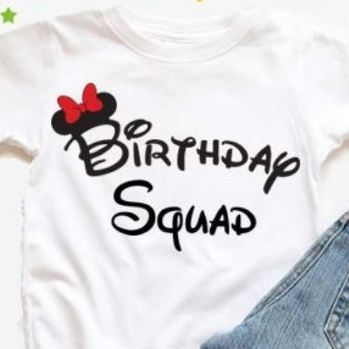 Ladies Birthday Squad Shirts Disney Party Favor