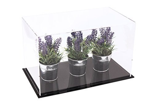 (Acrylic Deluxe Clear Display Case - Medium Rectangle Box 14