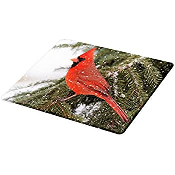 Bird Cutting Board Glass Cardinals Kitchen Home Decor Gift Wedding Willdlife NEW