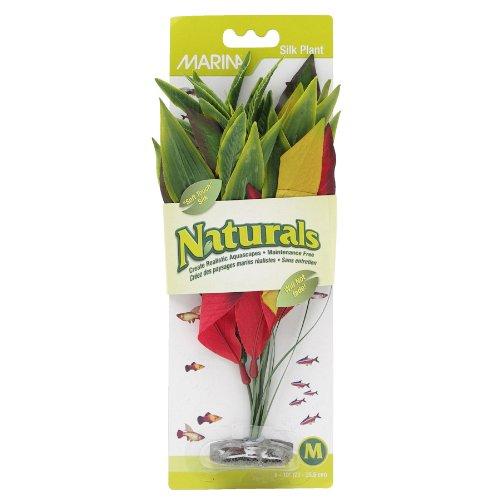 Marina Naturals Dracena Silk Plant, Medium, Red/Yellow