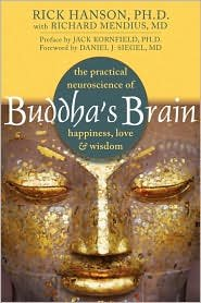 Download Buddha's Brain 1st (first) edition Text Only pdf epub