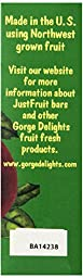 Gorge Delights JustFruit All Natural Fruit Snack Bar, Apple Cherry, 0.9-Ounce Bars (Pack of 24)