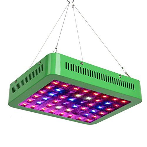 Warm Light Led Spectrum in US - 3