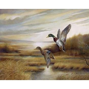 Amazon Com 2 Duck Wild Geese Water Fowl Western Hunting