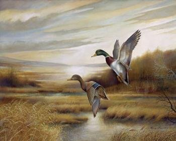 Duck Wall Decor Posters for Any Room in Your Home, Rustic Art (16