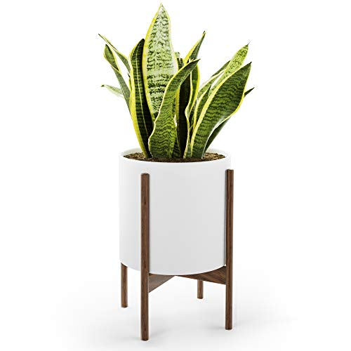 Mid Century Plant Stand