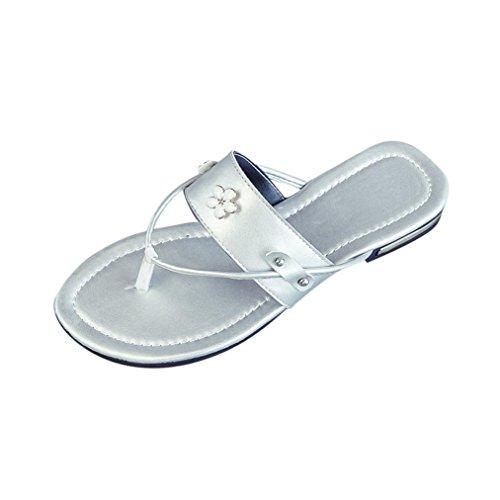 Womens Slipper ,Clode® [Fashion] Ladies Girls PU Leather Clip Toe Flat Flip Flops Slipper Sandals Summer Beach Shoes Gray
