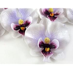"(50) Small White Purple Phalaenopsis Orchid Silk Flower Heads - 2"" - Artificial Flowers Heads Fabric Floral Supplies Wholesale Lot for Wedding Flowers Accessories Make Bridal Hair Clips Headbands Dress 12"