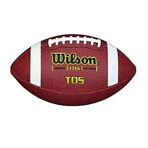 Wilson Composite Football