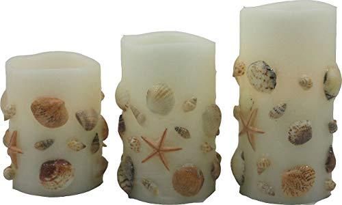 (Coastal Home 3-pc. White Sea Shell LED Pillar Candle Set One Size White)