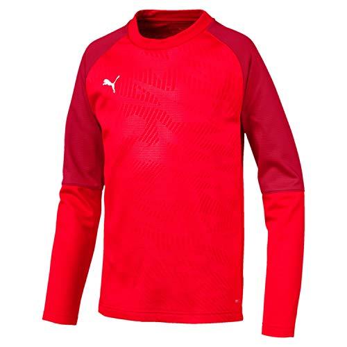 Sweat Sweatshirt Pepper Garçon chili Core Puma Cup Training Jr Red Eq7gU4w