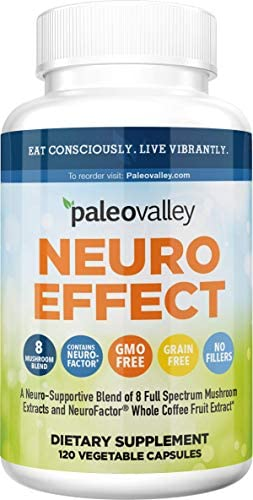 Paleovalley: NeuroEffect - Advanced Wellness and Immune Supplement - 120 Veggie Capsules - Natural Support for Focus, Memory, Stress Relief, and Energy - Flavorless - 8 Organic Mushroom Blend 1