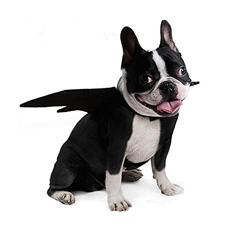 JHKUNO Pet Clothes Dog Cat Costume Apparel Puppy Fashion Cute Animal Bat Vampire Halloween Fancy Dress Outfit Wings (Black, L)