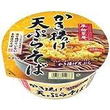 ヤマダイ 手緒里庵 かき揚げ天ぷらそば 1ケース(12食入)