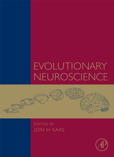 Evolutionary Neuroscience Pdf