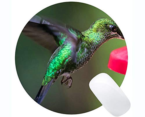 Customized Rectangle Non Slip Rubber Mousepad,Hummingbird Bird Wing Gaming Round Mouse Pads