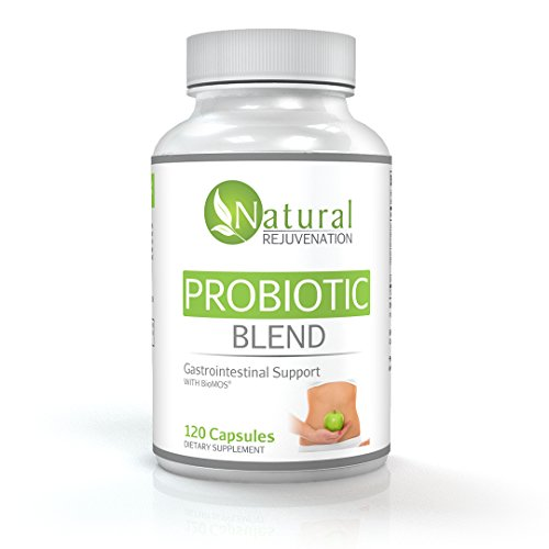Highly Rated Probiotics Premium Ultra Blend By Natural Rejuvenation - Scientifically Formulated Probiotics Supplement - One of the Best Probiotics Options on Amazon - Dairy Free Probiotic for Women and Men - 120 Count