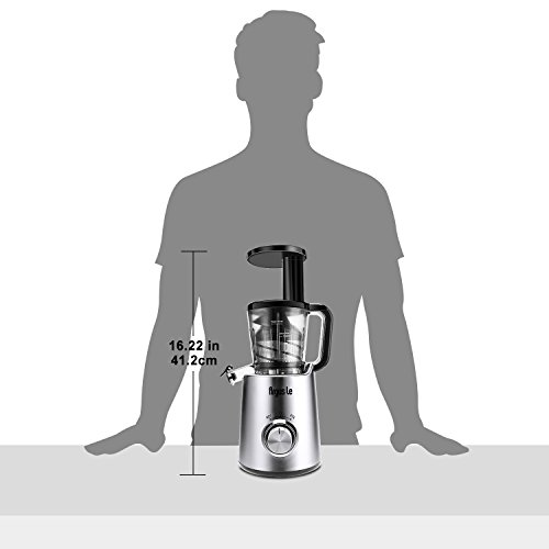 Argus Le Slow Masticating Juicer, High Juice Yield with Drier Pulp, Easy Cleaning and Operating Cold Press Juicer, Fruit and Vegetable Juice Extractor by Argus Le (Image #8)