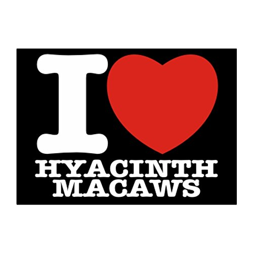 - Teeburon I love Hyacinth Macaws Pack of 4 Stickers