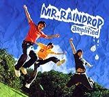 MR.RAINDROP