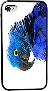 Lmf DIY phone caseRikki KnightTM Hyacinth Blue Macaw Design iPhone 5 & 5s Case Cover (Black Rubber with bumper protection) for Apple iPhone 5 & 5sLmf DIY phone case