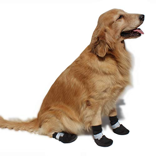 Hiado Dog Shoes Paw Protectors Detailed Review Dog Products Guide