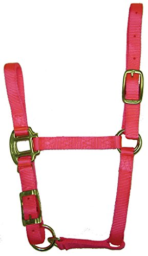 Hamilton 3/4-Inch Adjustable Quality Horse Halter, Weanling or Large Pony, Hot Pink ()
