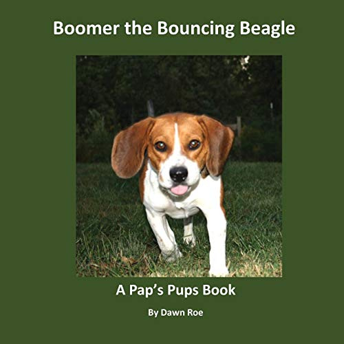 Boomer the Bouncing Beagle