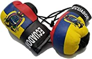 Country Flags Mini Boxing Gloves Sports Souvenirs Auto Displays