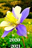 Pretty Purple Blue Colorado Columbine  Wildflower Lover s 25  Month Weekly Planner Dated Calendar for Women & Men: 2 years plus December To-Do ... & Dec.2019, 25 months Weekly Planner Book)
