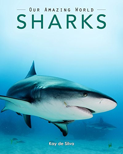 Sharks: Amazing Pictures & Fun Facts on Animals in Nature (Our Amazing World Series Book 5) (Amazing Sharks)