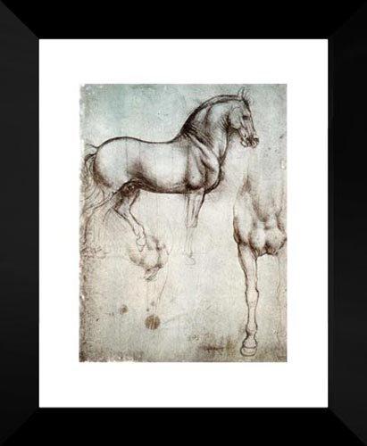 Study of horses 20x24 Framed Art Print by Da Vinci, Leonardo