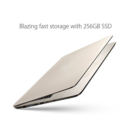 best asus laptops under 500