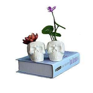 Simple creativa Europea blanco calavera cerámica, Micro paisaje jardín puede ser en maceta, Suculentas, cultivos hidropónicos, flores simulati