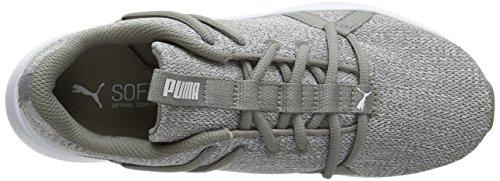 Fitnessschuhe Damen Elephant Skin WN's Puma 03 Grau Incite Knit dOYIqfw