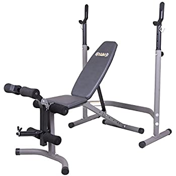 Amazon Com Gold S Gym Xrs 20 Olympic Workout Bench