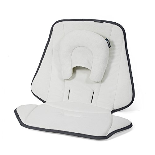 UPPAbaby Infant SnugSeat from UPPAbaby