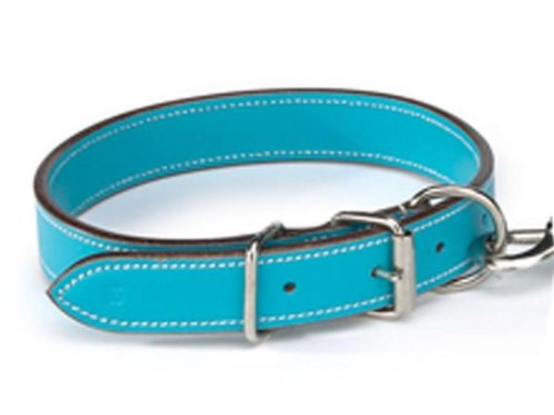 Flat Leather Dog Collar (Casual Canine Flat LeaTher Dog Collar, 22 to 26-Inch, Bluebird)