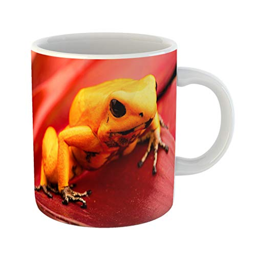 Emvency Coffee Tea Mug Gift 11 Ounces Funny Ceramic Poison Dart Frog Phyllobates Terribilis Deadly Animal From the Tropical Amazon Gifts For Family Friends Coworkers Boss Mug