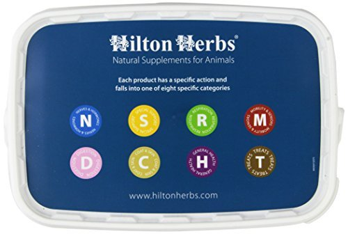 Hilton Herbs Milk Thistle Plus Pure Herbal Supplement for Horses, 1kg Tub by Hilton Herbs