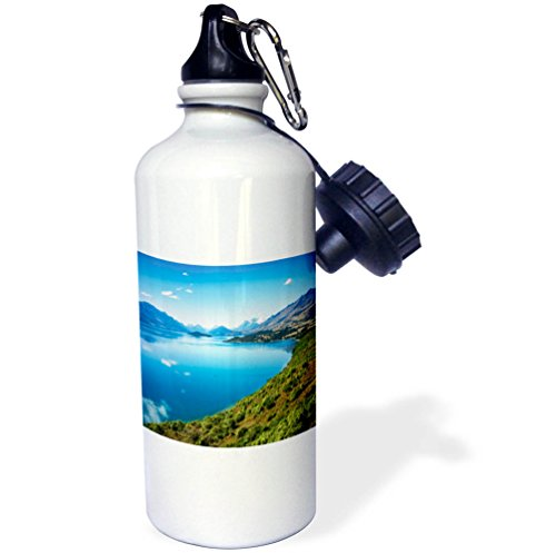 3dRose DanielaPhotography - Landscape, Nature - Stunning View from a famous scenic Lookout at Lake Wakatipu - 21 oz Sports Water Bottle (wb_281981_1) by 3dRose